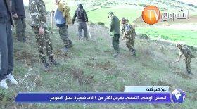 عين تموشنت..الجيش الوطني الشعبي يغرس أكثر من 5 آلاف شجيرة بجبل السومر