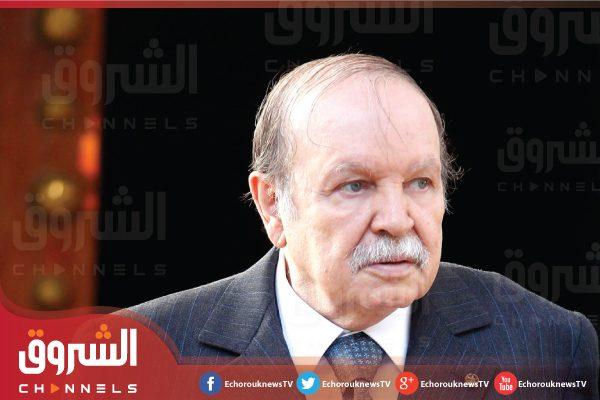 بوتفليقة: الجزائر بحاجة إلى دور المثقفين في مواجهة أزمة النفط