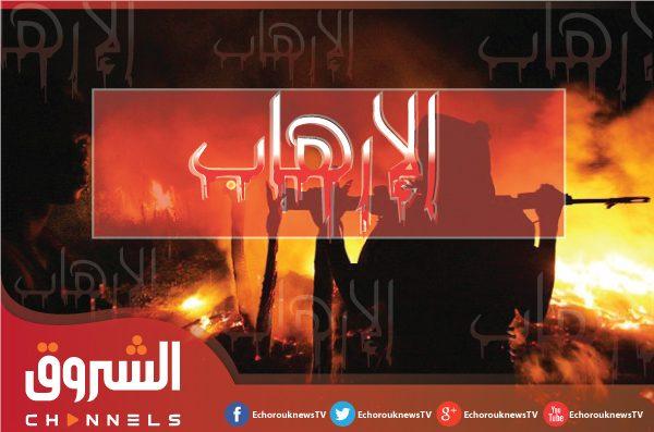 الجيش يوقف إرهابيا بتيمياوين