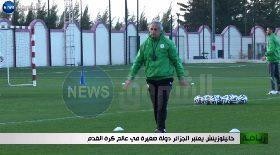 خاليلوزيتش يعتبر الجزائر دولة صغيرة في عالم كرة القدم