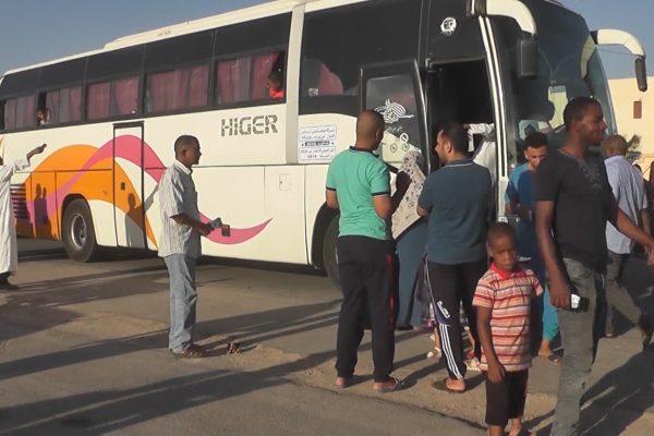 ورقلة: قرابة 04 ألاف طفل يستفيدون من مخيمات صيفية نحو مدن ساحلية