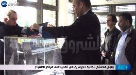 إقبال محتشم للجالية الجزائرية في ألمانيا عى مراكز الإقتراع