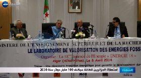 إستهلاك الجزائريين للطاقة سيكلف 100 مليار دولار سنة 2030
