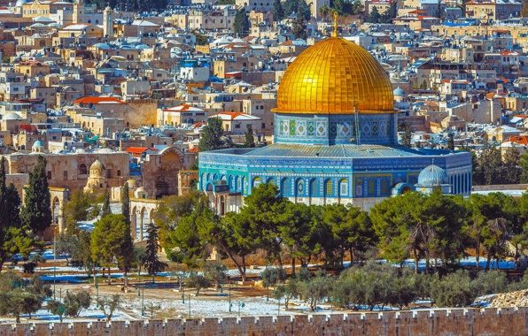 استشهاد 4 فلسطنيين وإصابة العشرات برصاص الجيش الإسرائيلي