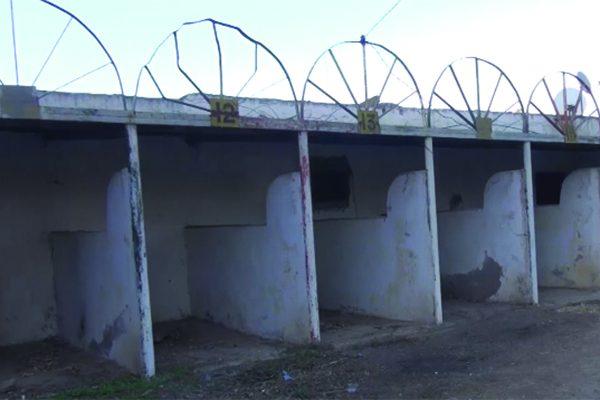 """وهران: مركب الفروسية بالسانية يتحوّل إلى """"حي قصديري"""" وأصحاب الاختصاص يستغيثون"""