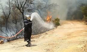 GREEN MAG … عدد اليوم عن الحرائق الاخيرة وخسائر الفلاحين