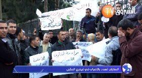 السناباب تهدد بالاضراب في فيفري المقبل