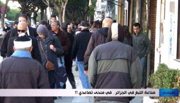 صناعة التبغ في الجزائر في منحى تصاعدي