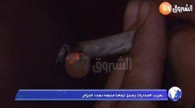 تهريب المخدرات يسجل أرقاما مخيفة تهدد الجزائر