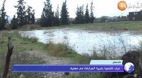 تلمسان..غياب للتنمية بقرية المرازقة في مغنية