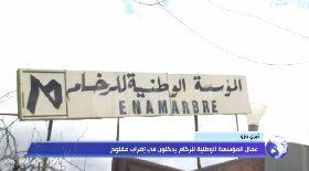 تيزي وزو… عمال المؤسسة الوطنية للرخام يدخلون في إضراب مفتوح