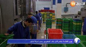 وزير الفلاحة يفتح النار على المهربين بسبب ندرة الحليب
