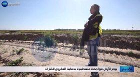 يوم الأرض مواجهة فلسطينية بحماية العابرون للقارات