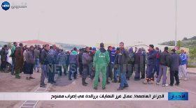 الجزائر العاصمة / عمال فرز النفايات بزرالدة في إضراب مفتوح