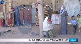 بشار / عائلة من الدبدابة تتخذ من مستودع ملجأ لها