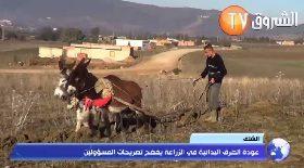 الشلف..عودة الطرق البدائية في الزراعة يفضح تصريحات المسؤولين