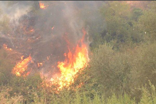 حرائق مهولة تتلف 130 هكتاراً من الغابات في يوم واحد بسكيكدة