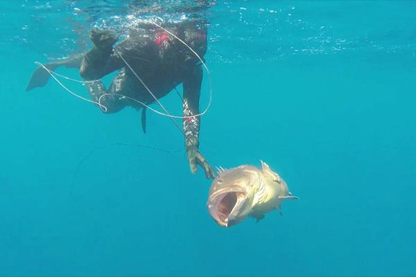 هاني رجل الأعماق .. 36 مترا وثلاثة دقائق تحت الماء