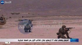 الجيش يقضي على 37 إرهابيا خلال الثلاثي الأول من السنة الجارية